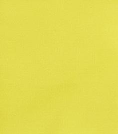 Meadowlark colore Pantone 2018