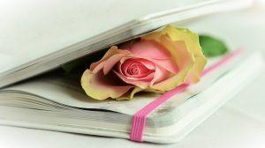 La poesia racconta l'amore